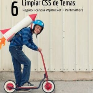 Quitar CSS de temas y Plugins WordPress